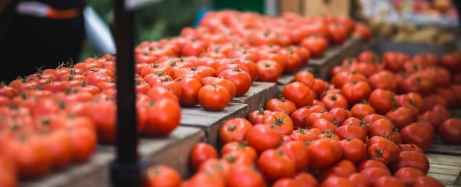 Red and ripe tomatoes on a table
